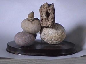 Vida en piedra. frontal